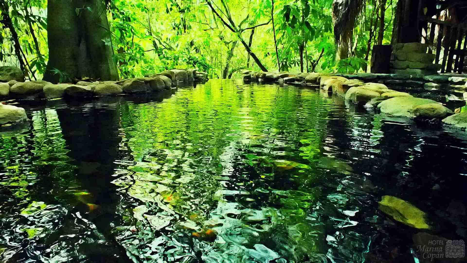 Luna Jaguar Hot Springs & Spa